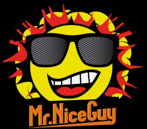 Mr. Nice Guy Sliders and Fries